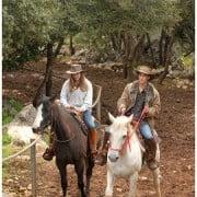 רכיבת סוסים רומנטית בעקבות הצלבנים