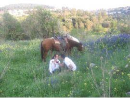 רכיבת סוסים זוגית