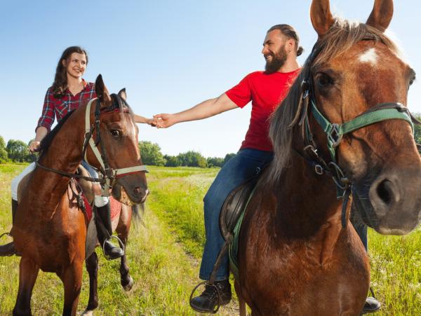 טיולי סוסים לזוגות