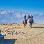 טיול סוסים