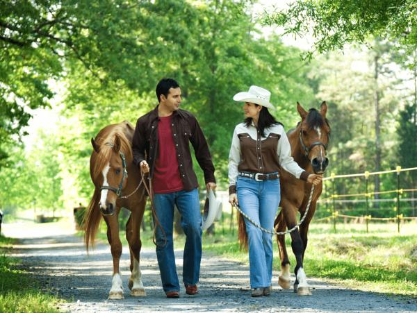 זוג בטיול סוסים